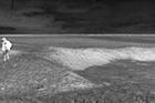 Grodzisk - grodzisko, fot. J. Jaskanis, 1959