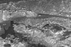 Kutowa - kurhan w trakcie badań, fot. J. Jaskanis, 1962