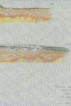 Osowa - kurhan 82, fragm. profili