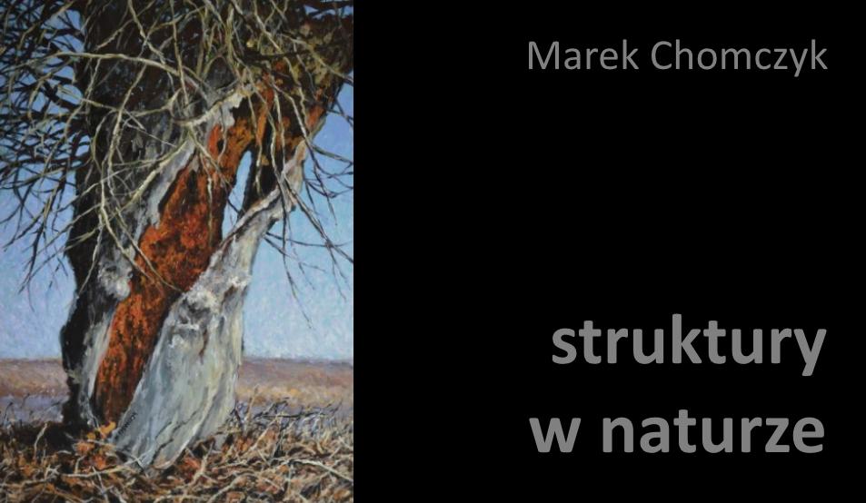 struktury w naturze Marek Chomczyk